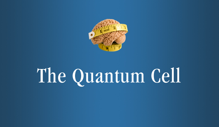November The Quantum Cell Webinar