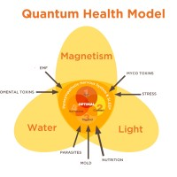 The Sweet Spot for Optimal Health: Gretchen Bronson on the Quantum Health Model
